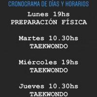 CLASES VIRTUALES ON LINE TAEKWONDO ITF VILLA URQUIZA AULAS VIRTUALES