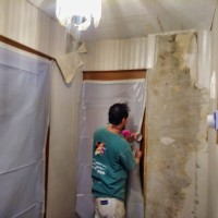 Four Seasons Painting and Lead Abatement