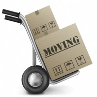 Budget Boys Moving