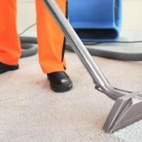 Fresh Carpet Cleaning Burpengary