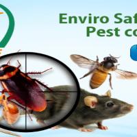 Enviro Safe Pest Control Melbourne