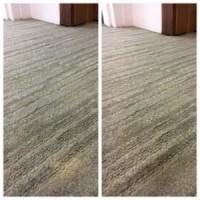 Vivid Carpet Rug Dyeing Sydney