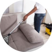 Best Reviews Carpet Cleaning & Pest Control