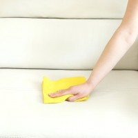 Upholstery Cleaning Hobart