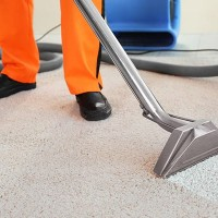 Carpet Cleaners Gold Coast