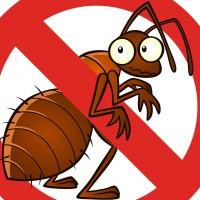 Pest Busters Pest Control Sydney
