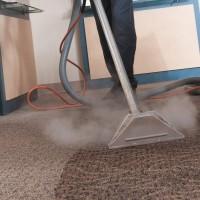 Cheap Carpet Cleaning Warragul