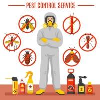 Tom s Pest Control Brisbane
