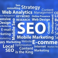 Web Cures Digital Marketing & SEO Agency