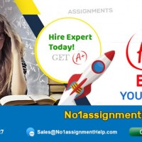 High-Quality Case Study Help from No1AssignmentHelp.com
