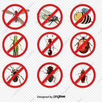 Local Pest Control Sydney