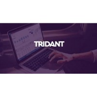 Tridant Pty Ltd