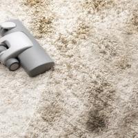 Expert Carpet Cleaning Sydney