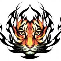 Exquizeet Tattoo & Piercing Studio