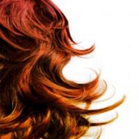 Chateau Hair Design - Bill's Barbershop