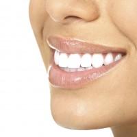 Molson Park Dental