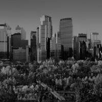 YYC Employment Law Group   Employment Lawyers Calgary