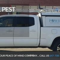 Power Pest Control Toronto