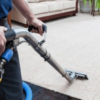 Brampton Carpet Cleaning Experts