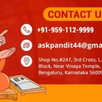 Astrologer Pandit Vikram Ji