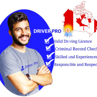 Driver Pro