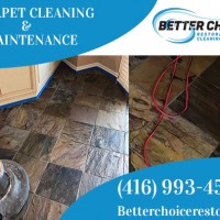 Better Choice Restoration and Carpet Cleaning Services