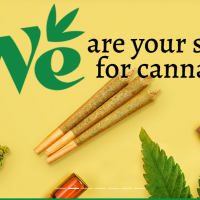 The We Store Cannabis