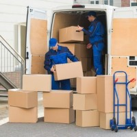TouchWood Movers Ajax-Pickering