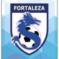 Academia de Fútbol Fortaleza de Viña Del Mar