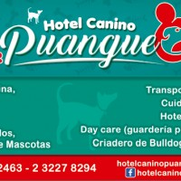 HOTEL CANINO PUANGUE