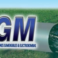 Bombas GM Chile Ltda