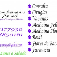 Consulta Veterinaria Holística Complemento Animal