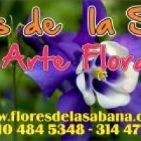FLORES DE LA SABANA -  FLORISTERÍA CALLE 116