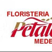 Floristeria Petalos Medellin