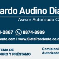 Ricardo Audino Diaz