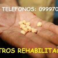 centro rehabilitacion drogas