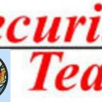 Security Team Enterprise