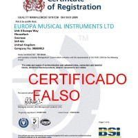 EUROPA MUSICAL INSTRUMENTS LIMITED