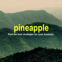 Pineapple. Innovative Consulting.