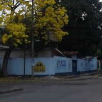 Escuela Evangelica La Patria