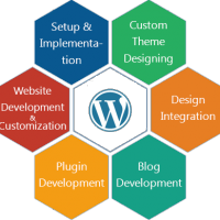 WIT Solution - Website Design, Development & SEO Company in Ahmedabad