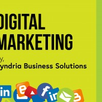 Syndria Business Solutions Pvt. Ltd.