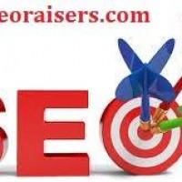 Seoraisers - SEO Company in Chandigarh