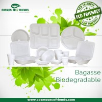 Cosmos Eco Friends | Eco Friendly Disposable Products