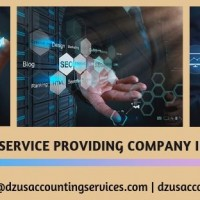 DZUS Accounting Services