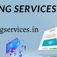 DigiTakneek Web Designing Agency