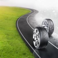 Shreeji Tyre Spot