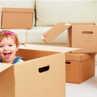 Pushpak Cargo Packers and Movers