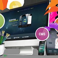 Pixxelu Web Design and Development Company