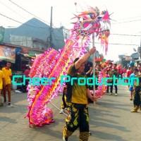Grup Barongsai Koh Rama